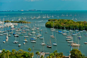 Coconut Grove on Biscayne Bay Coast