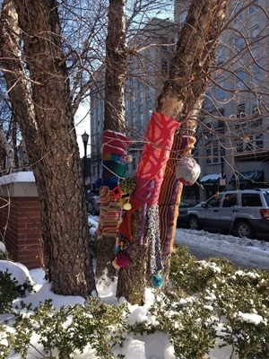 Knitting around tree in winter