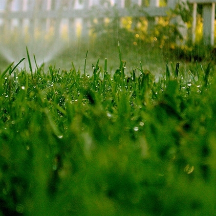What Our Water's Worth: McHenry adopts NWPA lawn watering ordinance