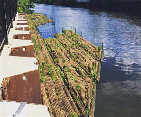 Local Nonprofit, Urban Rivers, Installs 166-foot Floating Garden in the Chicago River