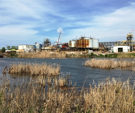 Coexisting on the Calumet: Helping industrial users create green spaces